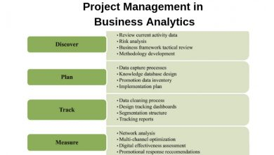 business analytics projects and project management
