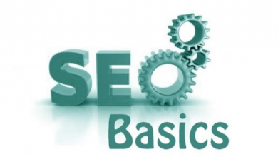 search engine optimization basics