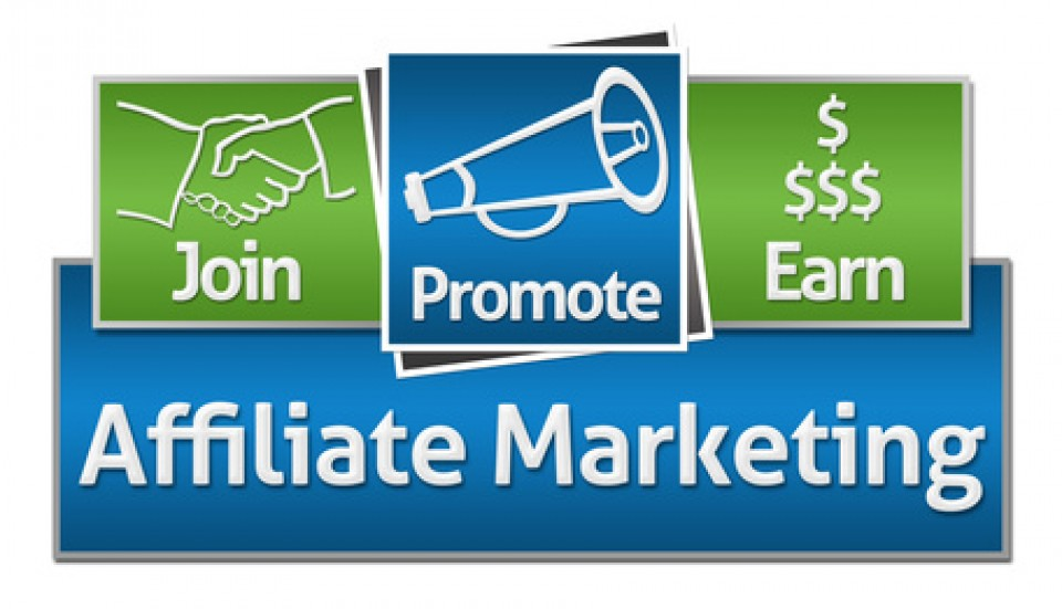 how much do websites earn with affiliate program